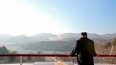 North Korea plutonium production resumed - US intelligence chief