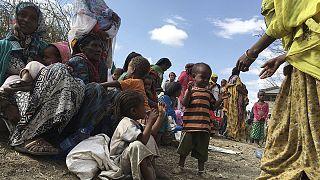 Эфиопия: деньги на борьбу с засухой и голодом закончились