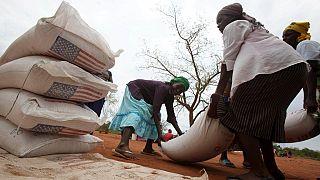 Le Zimbabwe recherche 1,5 milliard de dollars pour importer de la nourriture