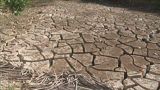 Το Ελ Νίνιο και το κύμα ξηρασίας σε όλο τον πλανήτη
