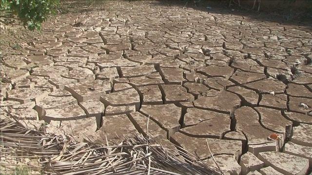Засуха и продовольственная безопасность в Африке и Центральной Америке