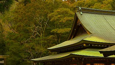 A walk around the 'spiritual home' of the Japanese