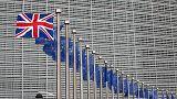 "Brexit'e doğru AB'den İngiltere'ye: ""Gitme kal ne olur"""