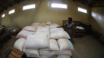 Malawi : le taux d'inflation a chuté de 1,9 % en 2015