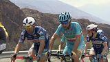 Tour of Oman: quarto sigillo stagionale di Alexander Kristoff