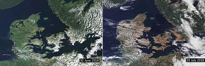 These satellite images show how this year\'s heat wave has taken its toll on vegetation in northern Germany, Denmark and Sweden. The first image shows how green the vegetation looked on June 30 and how it appeared dry and brown around two weeks later.