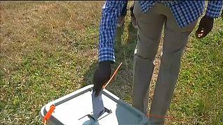 Ugandans vote in presidential election
