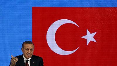 "Erdogan qualifie la milice kurde de ""terroriste"""