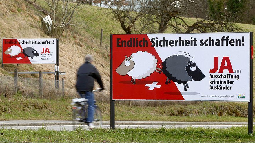 Schweizer Schafe und Hakenkreuz - Durchsetzungsinitiative der SVP
