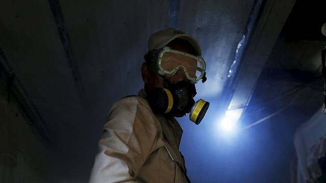 Beweis erbracht: Zika-Virus für erhöhtes Auftreten des Guillain-Barré-Syndroms verantwortlich