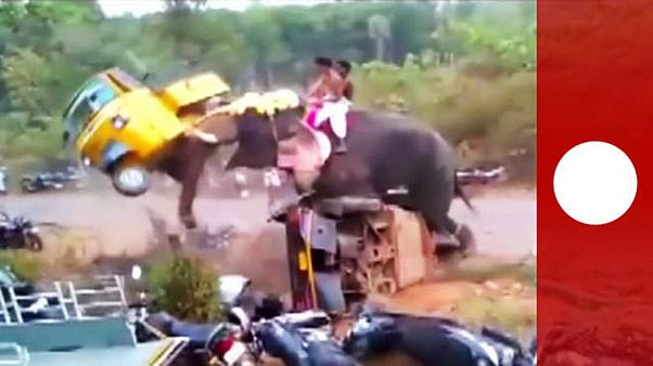 [Vídeo] India: un elefante que balanceaba coches
