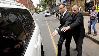 South African court denies Pistorius murder appeal leave