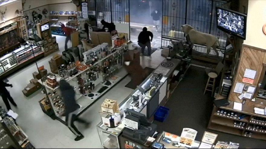 Rapina in un negozio di armi a Houston