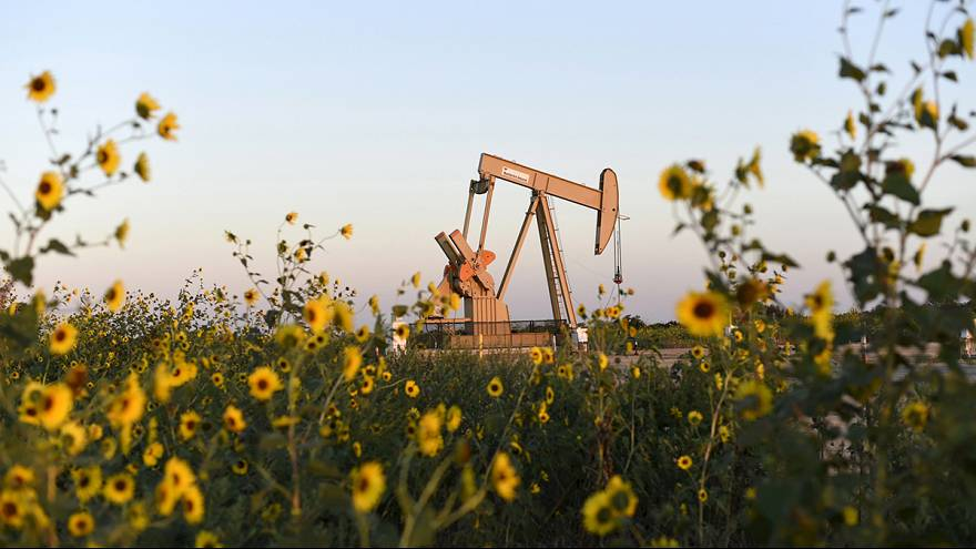 Glut and high inventories drive oil exports from US to Europe