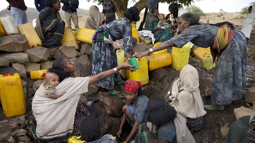 Siccità in Etiopia: El Nino brucia i raccolti, alla fame il 10% della popolazione e i numeri sono destinati ad aumentare