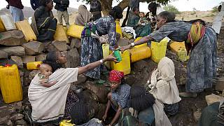 Ethiopia and UN appeal for help to feed 10.2 million people