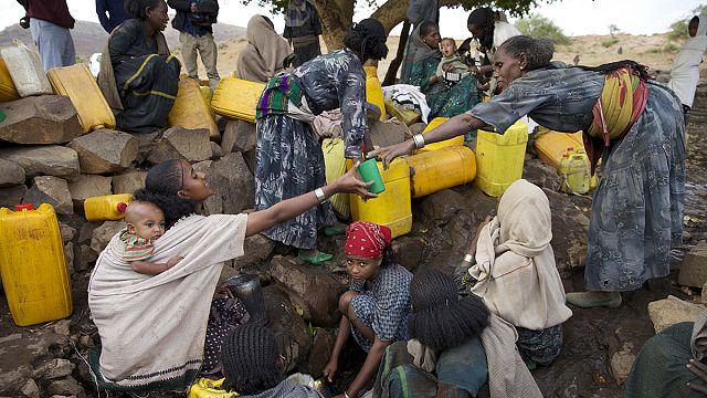 Etiyopya kuraklık karşısında can çekişiyor