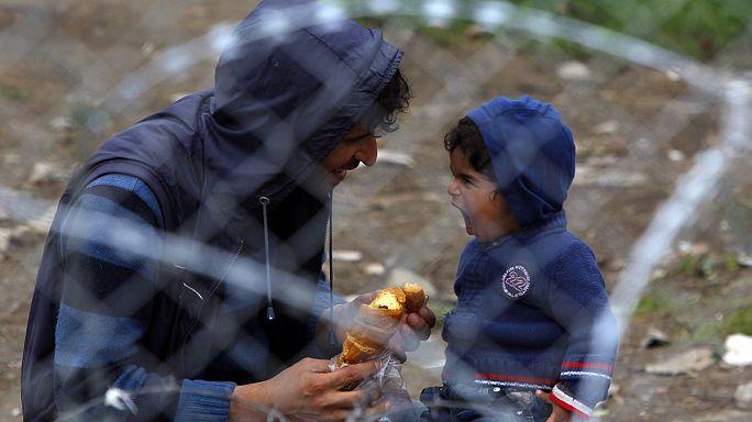 Makedonya sınırında sığınmacı dramı