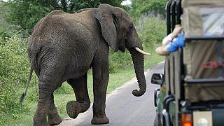 Plus de visibilité sur le paysage touristique sud-africain via Google Street View