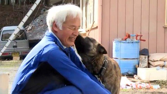 Fukushima, 5 anos depois: Matsumura Naoto, o protetor dos animais