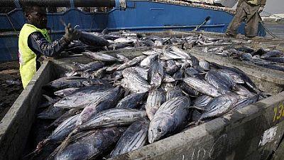 La Côte d'Ivoire adopte un plan de relance pour l'élevage, la pêche et l'aquaculture