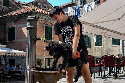 A boy helps a dog to drink water on a hot summer day in the town of Kotor, Montenegro, on Aug. 7.