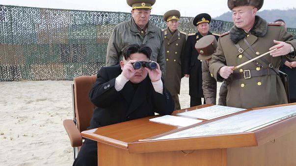 Kuzey Kore günlerdir kayıp olan denizaltıyı arıyor