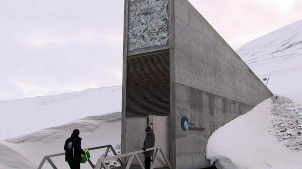 Réserve du Svalbard: une visite du grenier de la planète