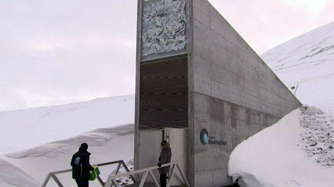 Réserve du Svalbard : une visite du grenier de la planète