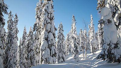 Finlande : mieux réagir aux conditions climatiques extrêmes
