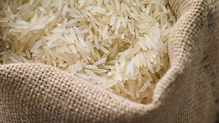 Egypt clamps down on rice hoarders