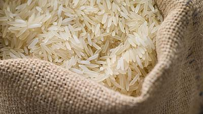 Le riz, ce casse-tête égyptien