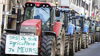 تجمع کشاورزان و دامداران در بروکسل