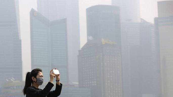 Sağlıksız çevresel faktörler dünyadaki ölümlerin dörtte birine neden oluyor