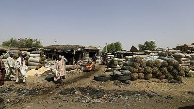 Nigeria : une nouvelle stratégie de lutte contre Boko Haram cause problème