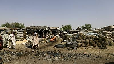 Nigeria: Maiduguri bears brunt of livestock market shut down