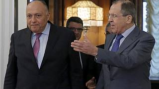 Russia working on resuming flights to Egypt