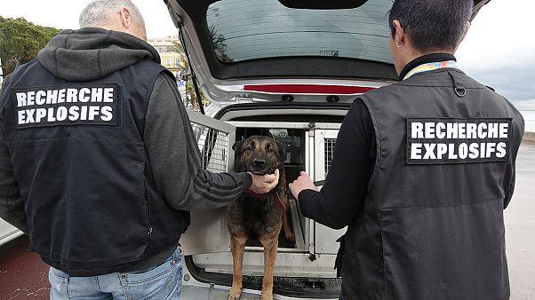 La policía francesa detiene a cuatro supuestos yihadistas listos para actuar en París