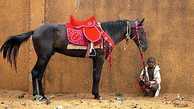 Niger still relives legendary horse racing days