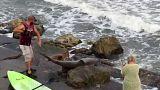 Un pescador estadounidense atrapa un enorme tiburón