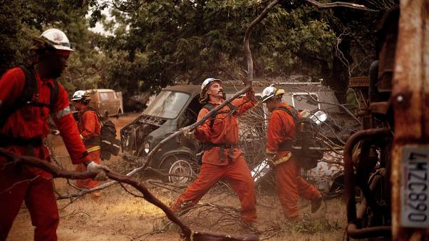 Inmate firefighters clear brush to create a fire break while battling the F