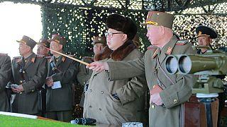 Corea del nord: 5 missili sparati nel mar del Giappone