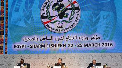 Egypt: African and Arab defence ministers focus on terrorism