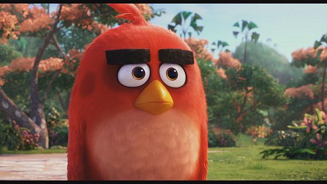 Ред из Angry Birds стал почётным послом ООН по климату