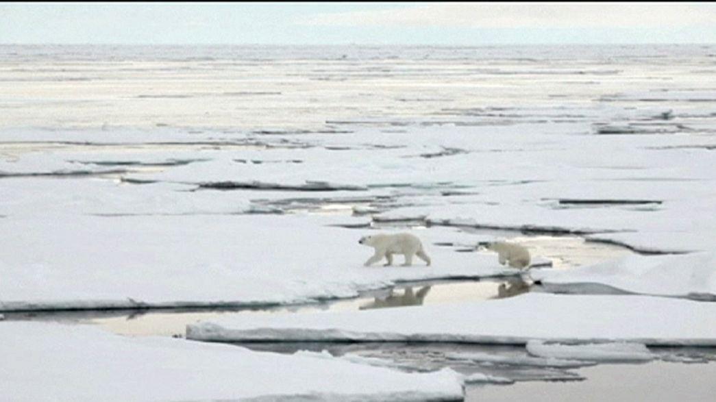 Dem Arktiseis auf der Spur