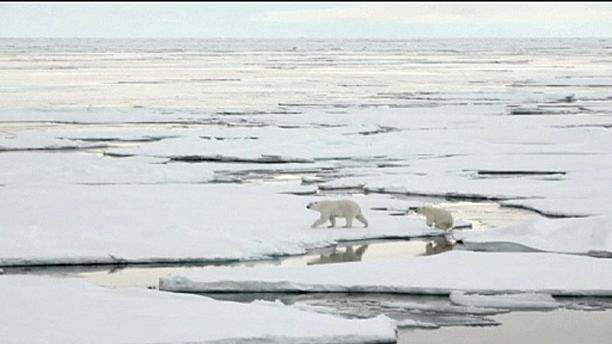 NASA to explore Arctic sea ice after record warm winter