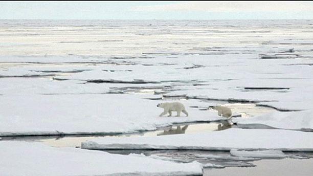 NASA to explore Arctic sea ice after record warm winter