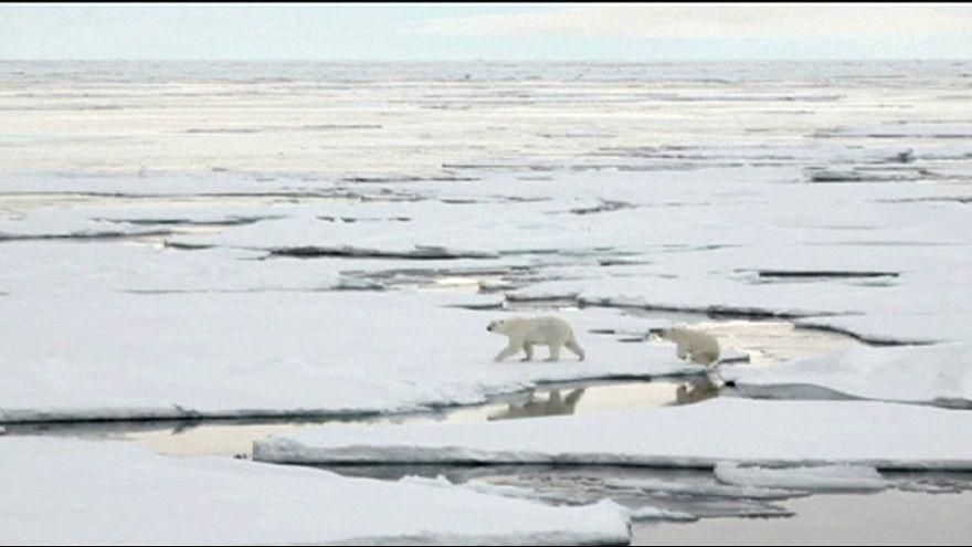НАСА будет изучать ледовый покров в Арктике
