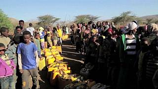 Ethiopia appeals for urgent donor support to meet drought needs