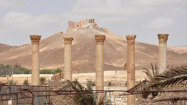 داعش وتجليات الخسارة على الأرض